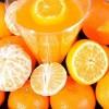 Domaci-sok-od-mandarine-657.jpg