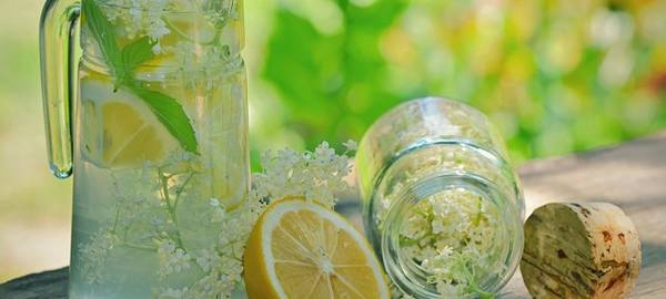 sok od zove zdravlje