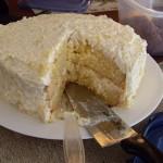 Posna ananas torta sa mlevenim keksom i pudingom